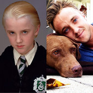 Tom Felton, Harry Potter