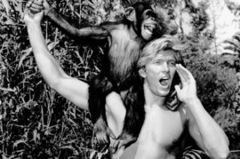 Denny Miller, Tarzan