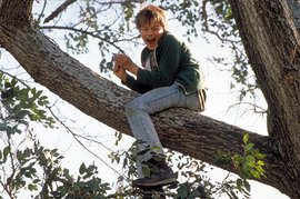Leonardo DiCaprio, What's Eating Gilbert Grape