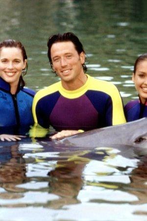 Flipper: The New Adventures