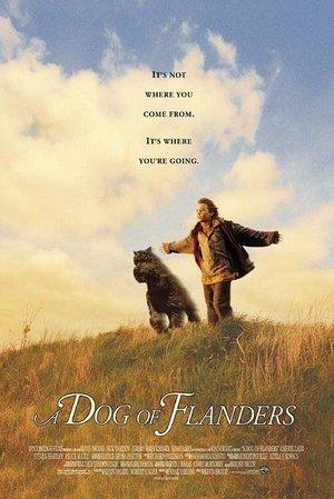 Dog of Flanders