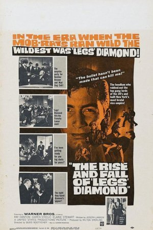 Rise and Fall of Legs Diamond
